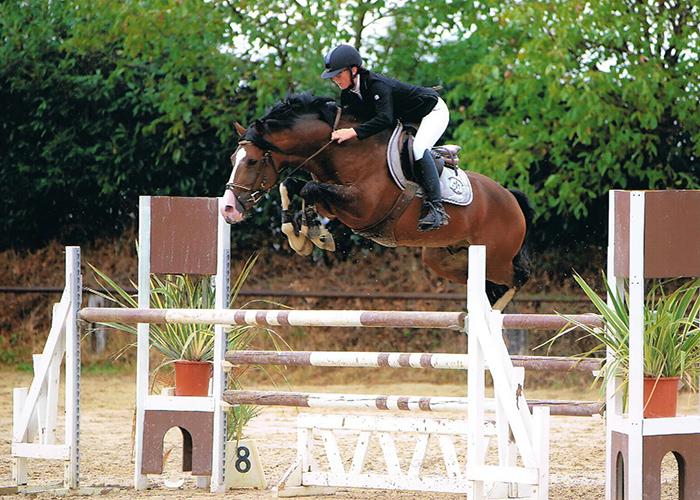 Cheval saut